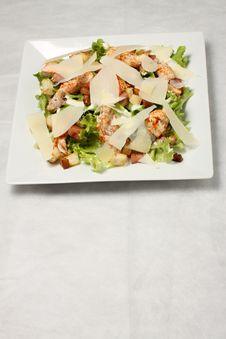 Free Chicken Green Salad Royalty Free Stock Photos - 14459238