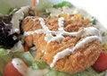 Free Grilled Chicken - Roast Chicken Stock Photos - 14467423