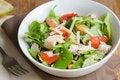 Free Chicken Caesar Salad Royalty Free Stock Photography - 14469357