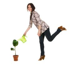 Free Beautiful Young Woman Watering A Plant Royalty Free Stock Photos - 14461058