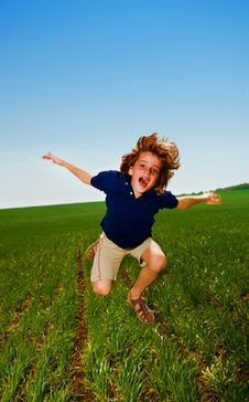 Free Cheerful Boy In Field Royalty Free Stock Photography - 14461447