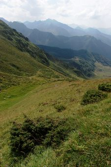 Free Appealing Point Of View In Pyrenean Smountain Stock Photos - 14461463