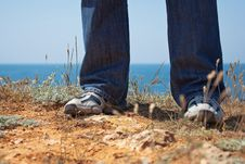 Free Feet In Slippers About The Sea Royalty Free Stock Images - 14462219