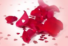 Free Red Petals And Red Hearts Royalty Free Stock Photos - 14462448