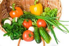 Free Vegetables Stock Photos - 14464583
