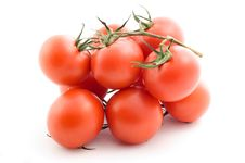 Free Tomatoes Stock Photography - 14465322