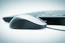 Free Mouse Stock Photos - 14466583