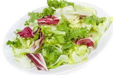 Free Salad Mixed Greens Royalty Free Stock Photography - 14467767