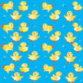 Free Background With Ducklings Stock Photo - 14478860