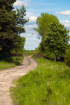 Free Forest Road Stock Photos - 14471163