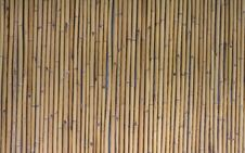 Free Bamboo  Texture Stock Photo - 14472150