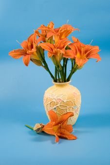 Bouquet Of Day-lily Flowers
