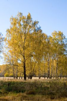 Free Beautiful Autumn Landscape Stock Photos - 14473743