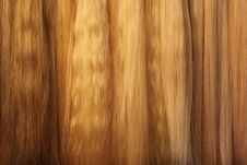 Free Hairs. Stock Image - 14479031