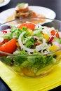 Free Fresh Salad Royalty Free Stock Photo - 14482315