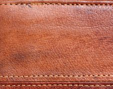 Free Brown Purse Stock Image - 14480191