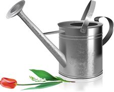 Free Watering Can And Flowers. Stock Photo - 14481010