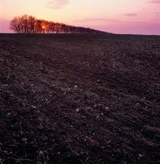 Free Sunset. Stock Image - 14481681