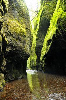 Free Oneonta River Gorge Stock Photos - 14482103