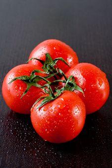Free Fresh Tomatoes Royalty Free Stock Photo - 14482215