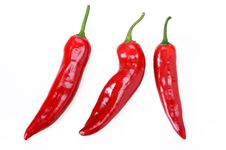 Free Red Hot Chili Peppers Royalty Free Stock Photos - 14482778