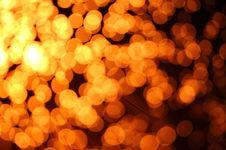 Free Fiber Optics Royalty Free Stock Photo - 14482935