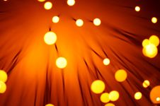 Free Fiber Optics Royalty Free Stock Image - 14482976