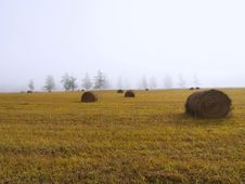 Free Haystacks In A Fog Stock Images - 14486254
