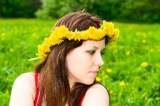 Free Girl In Garland Royalty Free Stock Photos - 14487098