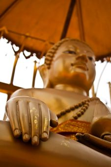 Palm Of Buddha Royalty Free Stock Photos