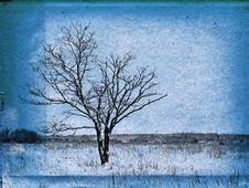 Free Grunge Background Stock Photos - 14488803