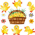 Free Ducklings Icons Royalty Free Stock Images - 14491669