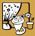Free Happy Cat Stock Photos - 14494293