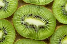 Free Kiwi Background Stock Photo - 14490320