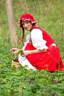 Free Red Riding Hood In The Wood Royalty Free Stock Images - 14492499