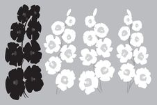 Free Hollyhocks In Shades Of Grey Stock Photo - 14492850
