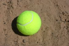 Free Tennis Ball Royalty Free Stock Photography - 14492887
