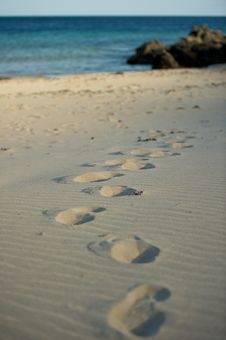 Free Foot Prints Stock Photos - 14494383