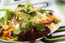 Free Fresh,big Italian Summer Salad Stock Photo - 14497120