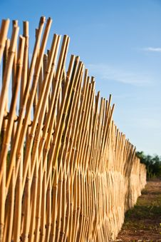 Free Bamboo Fence Stock Images - 14497334