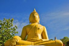 Free Buddha Stock Image - 14498041