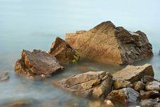 Free Marine Rock Royalty Free Stock Image - 14498306