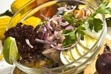 Free The Tuna Salad Mexican Style Stock Photos - 14499633