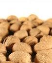 Free Walnuts Royalty Free Stock Image - 1452726