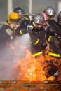 Free Firefighters Stock Photo - 1458330