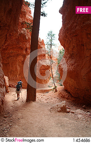 Hikers on Desert Trail Stock Photo