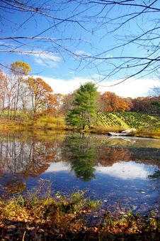 Free Farm Pond Royalty Free Stock Photos - 1451358