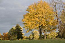 Free Stormy Fall Sky Stock Photo - 1451830