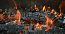 Decaying Coals Stock Images