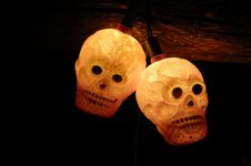 Free Haloween Skulls Royalty Free Stock Images - 1458249